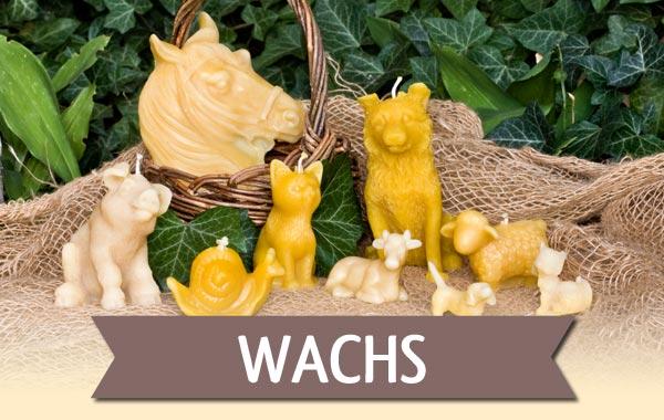 Produkte aus Bienenwachs